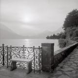 Lake Vista I Photographic Print by Alan Blaustein