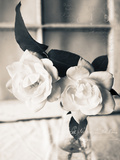 Roses in a Vase BW Photographic Print by Bob Rouse