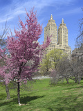Central Park Spring Colors Photographic Print by Chris Bliss