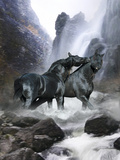 Dream Horses 065 Stampa fotografica di Bob Langrish