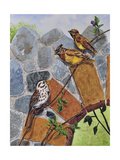 Song Sparrow and Cedar Waxwings Giclee Print by Charlsie Kelly