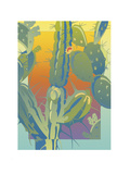 Cactus Giclee Print by David Chestnutt