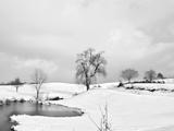 Small Pond BW Fotografisk trykk av Bob Rouse