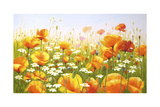 Poppies Giclee Print by Edward Park