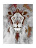 Lion Mix 5-XLIV Giclee Print by Fernando Palma
