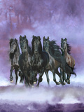 Dream Horses 057 Photographic Print by Bob Langrish