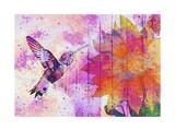 Hummingbird XVII Giclee Print by Fernando Palma