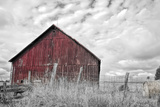 Painter Barn BW Photographic Print by Bob Rouse