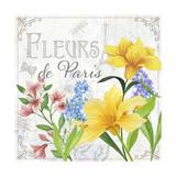 Fleurs II Giclee Print by Fiona Stokes-Gilbert