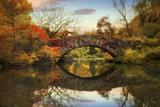 Foliage at Gapstow Bridge Photographic Print by Jessica Jenney
