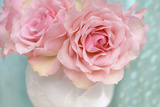 Pink Rose Bouquet Photographic Print by Cora Niele