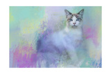 Dreaming of Spring Giclee Print by Jai Johnson