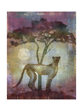 Africa Cheetah Giclee Print by Greg Simanson