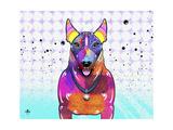 Bull Terrier XI Giclee Print by Fernando Palma