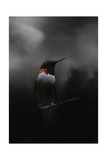 Waiting in the Darkness Giclee-trykk av Jai Johnson