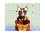 Bull Terrier Brown Oxide LX Giclee Print by Fernando Palma