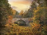 Botanical Bridge Photographic Print by Jessica Jenney