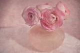 Pink Ranunculus Bouquet Photographic Print by Cora Niele