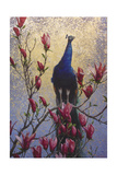 Peacock Giclee Print by Michael Jackson