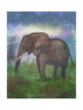 Africa Elephant Giclee Print by Greg Simanson