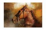 Tennessee Walker in August Giclee Print by Jai Johnson