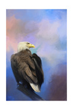 Watching over the Heavens Giclee Print by Jai Johnson