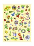 Garden Theme Giclee Print by Geraldine Aikman