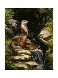 Otters Giclée-tryk af Jackson, Michael