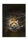 Tiger Giclee Print by Michael Jackson
