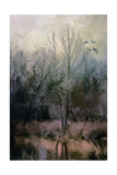 Morning at Fairground Swamp Giclee Print by Jai Johnson