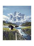 Eagle Mountain Giclee Print by John Van Straalen