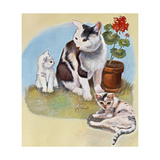 Mother Cat and Kittens Impressão giclée por Judy Mastrangelo