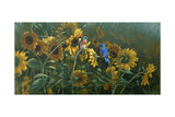 Sunflowers Giclee Print by Michael Jackson