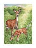 New Mother and Fawn Giclee Print by Melinda Hipsher