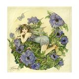 Anemone 2 Giclee-trykk av Linda Ravenscroft