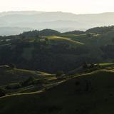 Vineyard Hills Lámina fotográfica por Lance Kuehne