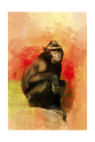 Colorful Expressions Black Monkey Giclee Print by Jai Johnson