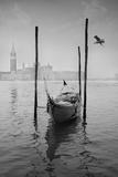 Gondola Y Gaviota Photographic Print by Moises Levy