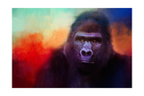 Colorful Expressions Gorilla Giclee Print by Jai Johnson