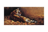 Reclining Tiger Giclee Print by Michael Jackson