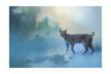Winter Bobcat Giclee Print by Jai Johnson