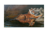 Indian Summer Giclee Print by Michael Jackson