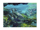 Tranquility Atlantic Bottlenose Dolphins Giclee Print by Lucy P. McTier