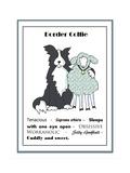 XL Border Collie Giclee Print by Jennifer Zsolt