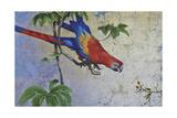 Parrot Stampa giclée di Jackson, Michael
