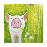 Pig Giclee Print by Michelle Faber