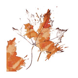 Leaf 1 Giclee Print by Karen Williams