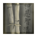 Bamboo I Giclee Print by Kory Fluckiger