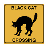 Black Cat Crossing Giclee Print by Tina Lavoie