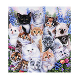 Kitten Collage Giclee Print by Jenny Newland